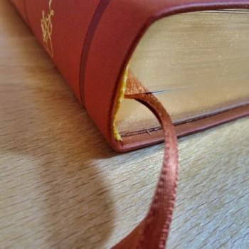 Biblia UBG Normalna czcionka