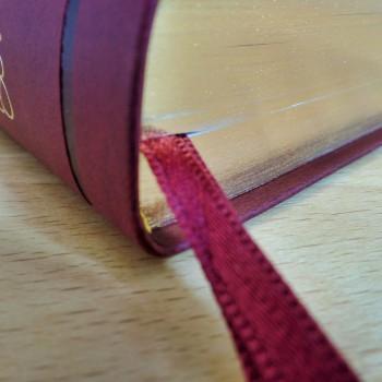 Biblia UBG F2 PU z indeksami bordo
